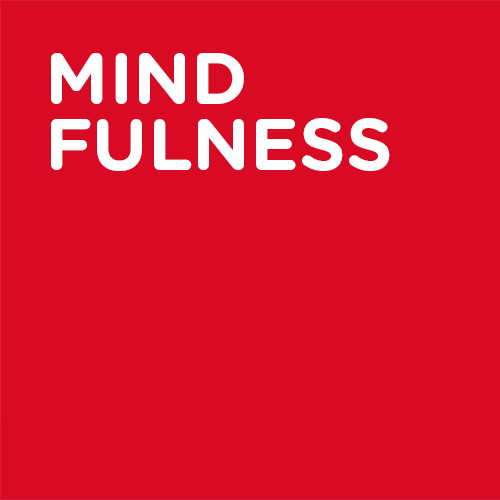 Mind Fulness